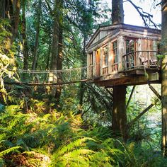 20 epic treehouses from around the world - Matador Network