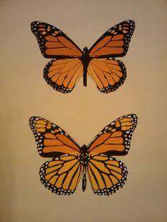 Monarch Butterflies Acrylic on canvas, 16x20