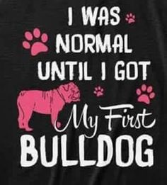 The major breeds of bulldogs are English bulldog, American bulldog, and French bulldog. The bulldog has a broad shoulder which matches with the head. Bulldog Quotes, Bulldog Names, Funny Bulldog, Dog Love, Puppy Love, Cute Bulldogs, Baby Bulldogs, French Bulldogs, Olde English Bulldogge