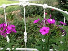 Antique iron headboard put in the garden to have plants grow on and around, will look really nice with climbing plants as it wears in!