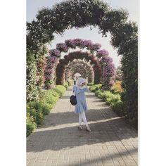 Ayu Tingting @ayutingting92: Beautiful garden..Peaceful