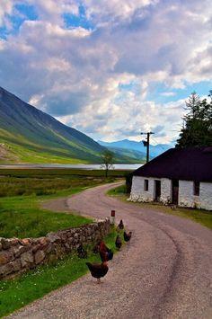 Not Ireland... ~ Actually, it's Scotland: Lough Ettive, apparently ...