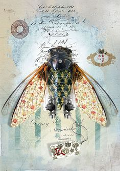 Finding The Beauty In Insects Of Andre Sanchez Graphic Art News - Andres Is Using A Mixture Of Photography Graphics Typography Textures And Of Course Imagination To Create His Beautiful Artworks Recently He Focuses His Interest In Various Creative Fields Mixed Media Collage, Collage Art, Art Steampunk, Top Photos, Insect Art, Assemblage Art, Paris Photos, Art Graphique, Cat Art