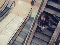 Democrats on an Escalator Full Version