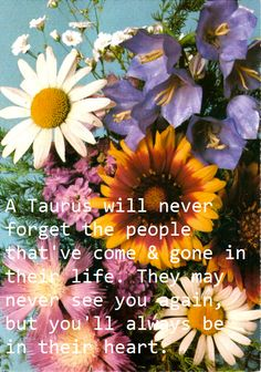 A Taurus will never forget the people that've come & gone in their life. They may never see you again, but you'll always be in their heart.
