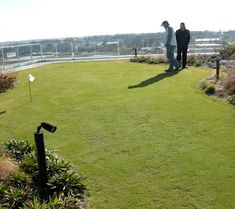 Gurus in Plant Design - putting holes on the roof Living Roofs, Plant Design, Golf Courses, Mai, Plants, Plant, Planets
