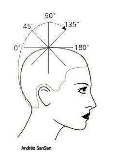 Mejores 62 imágenes de Diagramas de corte de cabello