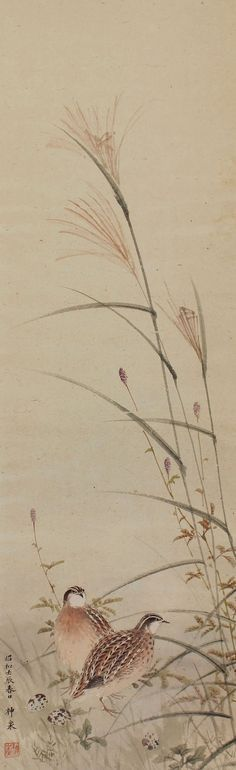 Antique Japanese Fine Art Wall Hanging Scroll Painting Bird and Flower Quail in the Japanese Pampas
