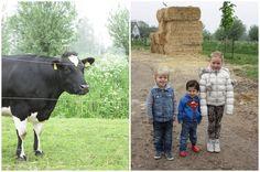 Op bezoek bij koopeenkoe.nl | www.francescakookt.nl