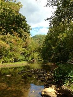 Laurel Creek, Oceana  in Wyoming County  by Wyoming County Tourism