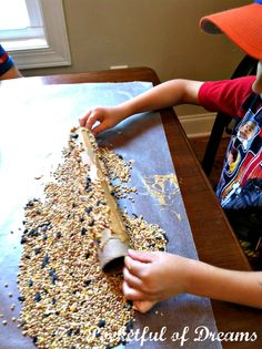 DIY Bird Feeders: Cardboard tube and peanut butter rolled in seeds then hang. Wrapping papers rolls, toilet paper tubes, it all works.