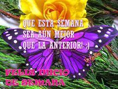 ♥♥FRASES DE MOTIVACION, SUPERACION, AMOR Y MAS♥♥: FELIZ INICIO DE SEMANA