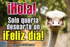 ¡Hola! ¡Feliz día! « Letreros Cristianos.com :: Imagenes Cristianas, Imagenes para Facebook, Frases Cristianas