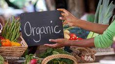 organic agriculture - Buscar con Google