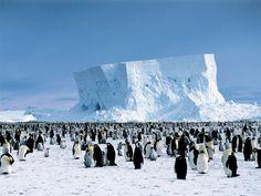 Quattro Meraviglie Naturali della Terra: L'Himàlaya, L'Antartide, L'Europa, Il Grand Canyon