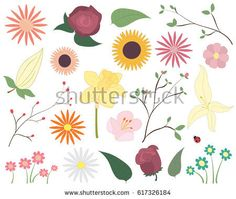 Vector graphic set - Set of colourful flowers. Floral elements including leaves, blossom and even a ladybird!