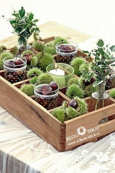 Deko Deko The post Deko & Deko appeared first on Fall decor ideas . Nature Crafts, Fall Crafts, Diy And Crafts, Fall Home Decor, Autumn Home, Deco Nature, Autumn Decorating, Deco Floral, Deco Table