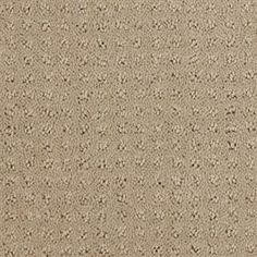 Carpet Arbor R0916 Western ★ For more info and price contact us today! (619) 275-2229 #americasbestflooring #sandiego #flooring