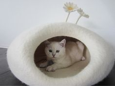 Felted cat cave