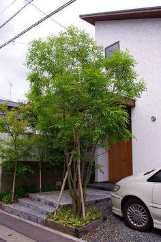 ガーデンデザイン/樹家設計/福岡の画像