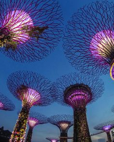 Want to experience that Singapore lifestyle? Check out this guide to the country's best hotels and the attractions near each. Truly something for everyone.