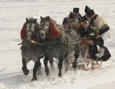 A ride with the slaigh a ride with the slide City People, Draft Horses, Winter Scenes, Romania, Winter Wonderland, Moose Art, Nostalgia, Folk, Places To Visit