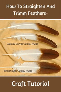 Turkey feathers are naturally curved. To make them look like Eagle feathers it is necessary to flatten the feather quill without damaging the feather blade. In our example here we will use commercially dyed white turkey wing feathers. Indian Feathers, Eagle Feathers, Turkey Feathers, Pheasant Feathers, Feather Painting, Feather Art, Feather Wreath, Feather Quotes, Feather Signs