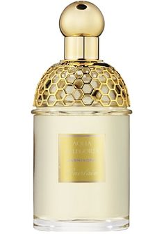 Aqua Allegoria Jasminora is a limited edition for 2011. This fresh floral fragrance opens with notes of galbanum, bergamot and cyclamen. The heart features Calabrian jasmine, freesia and lily of the valley, while the base consists of musk and amber.    Available as 125 ml EDT