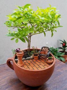Indoor Fairy Gardens, Mini Fairy Garden, Fairy Garden Houses, Diy Garden, Miniature Fairy Gardens, Garden Crafts, Garden Projects, Fairy Gardening, Balcony Garden