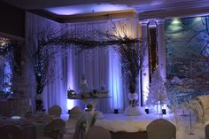 Beautiful backdrop for Frozen themed Quinceanera