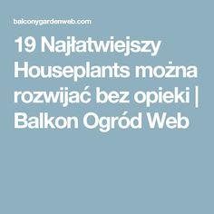 19 Najłatwiejszy Houseplants można rozwijać bez opieki    Balkon Ogród Web