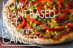 Preventing Cancer with a Plant-Based Diet : scientific community has found links between animal byproducts and cancers. reducing meat can increase overall health! go meatless mondays :)