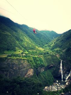 This was awesome! Canopy Ecuador