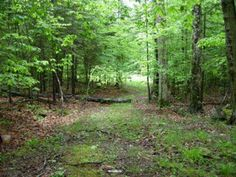 #Door County, Wisconsin Land for Sale; Farmland, Vacant Lot, Large Acreage, Waterfront Lots and more... http://idxwi.thelandman.net/i/Door_County_Wisconsin_Land_for_Sale