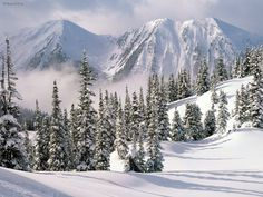 Nature: Winter Wonderland, British Columbia, Canada, picture nr. 25520