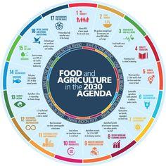 Cómo se conectan los desafíos de la industria de la alimentación con los #ODS