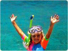 The Cairns Tourism Website - Cairns - Quicksilver Outer Barrier Reef
