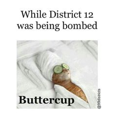 Oh buttercup