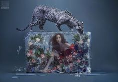 Angelababy frozen in time by Chen Man – Cfensi Archie Kao, Heavenly Sword, Djimon Hounsou, Golden Horse, Angelababy, Just Style, Frozen In Time, Beauty Shoot, Paladin