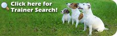 The Association of Pet Dog Trainers official website
