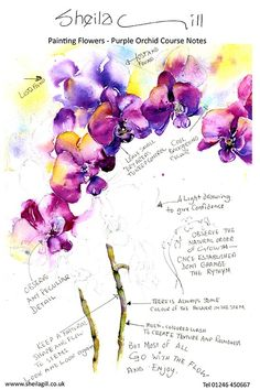 marney ward class notes - Google Search