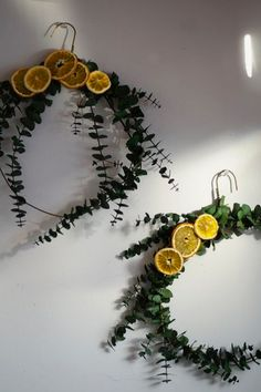Eucalyptus and Dried Orange Wreath DIY Natural Christmas, Noel Christmas, Winter Christmas, Christmas Wreaths, Christmas Decorations, Xmas, Fall Wreaths, Christmas Ornament, Wreaths Crafts