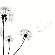The Allergies / Autoimmunity Relationship   Healthful Elements