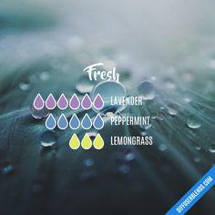 Fresh - Essential Oil Diffuser Blend #Essentialoildiffusers