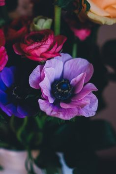 Download this free photo from Pexels at https://www.pexels.com/photo/red-rose-beside-blue-and-pink-petaled-flower-in-white-ceramic-vase-203914/ #flowers #petals #bouquet