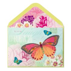 Dream Butterfly card by Papyrus