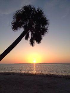 So schön ist der Sonnenuntergang auf Sanibel