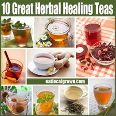 10 Great Herbal Healing Teas