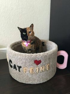 """Cat bed : """"Catfeine"""" coffee cup design handcrafted in USA - Captain Catnip Cool Cat Beds, Cool Cats, Cat Ideas, Bubble Cat, Cat Cafe, Cat Room, Pet Furniture, Marceline, Crazy Cats"""