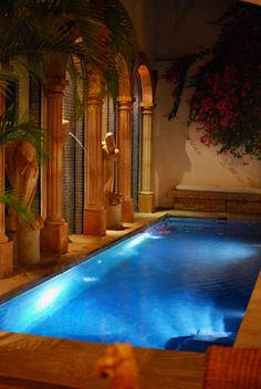 Would love to have an indoor pool, no sun screen needed, and could swim day or night rain or shine!